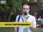 Ted Leo as Fruit Correspondent at Pitchfork Fest 2006